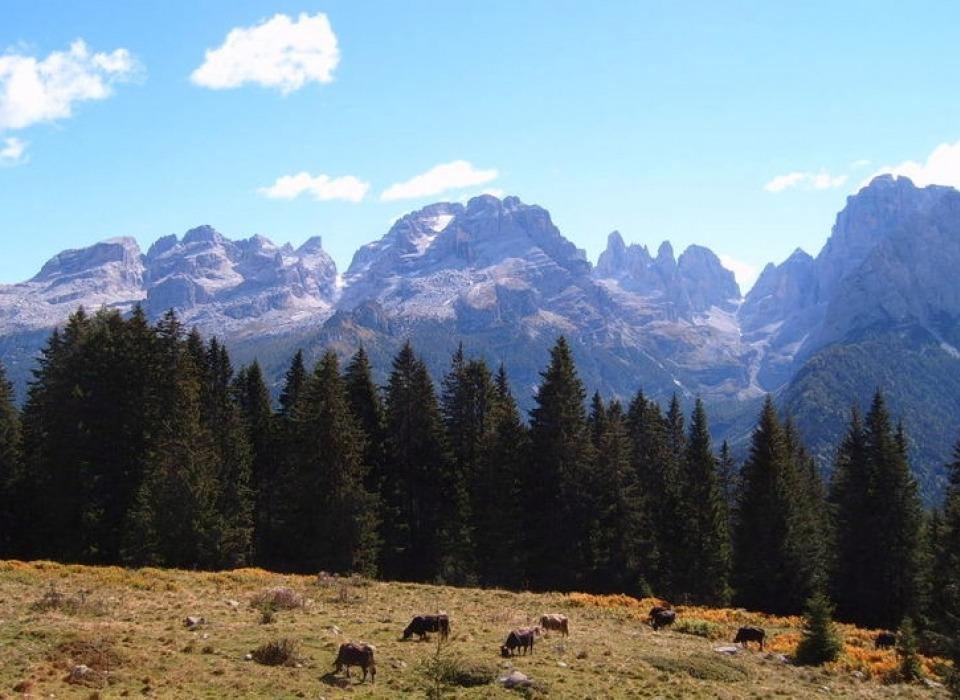 Brenta Dolomites (Italy)